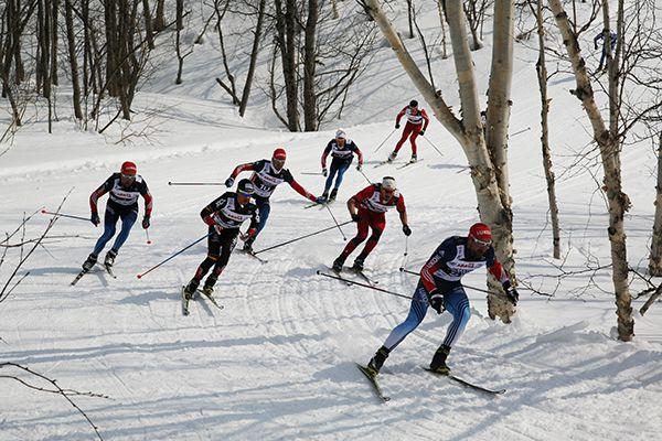 Сильнейшие лыжники.