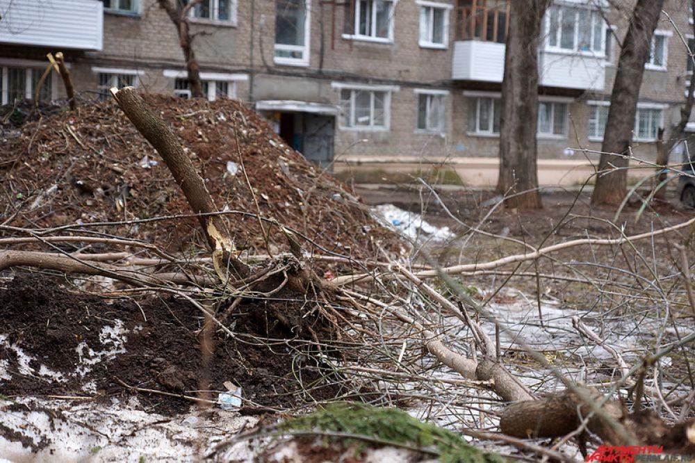 Еще один «бич» весны – неубранные деревья, которые спиливают во дворах Перми.