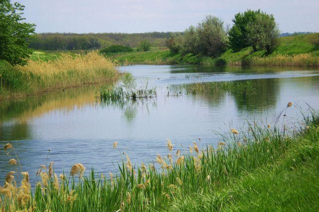 29 млн рублей заплатили предприятия за ущерб рекам.