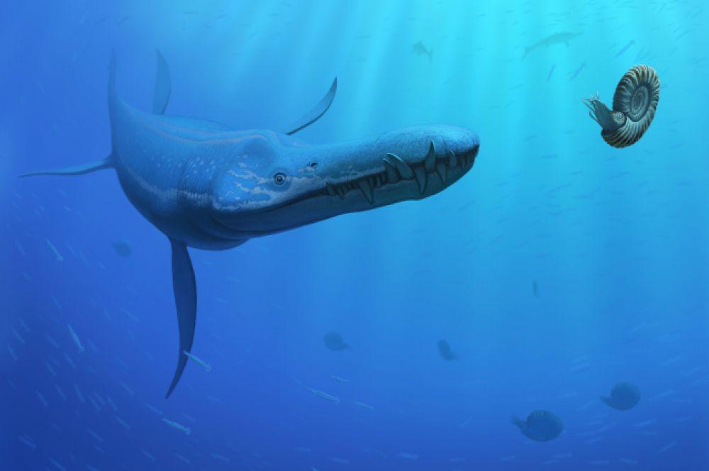 Лиоплевродон – один из самых крупных хищников Юрского периода. Он жил в морях на территории нынешней Европы.