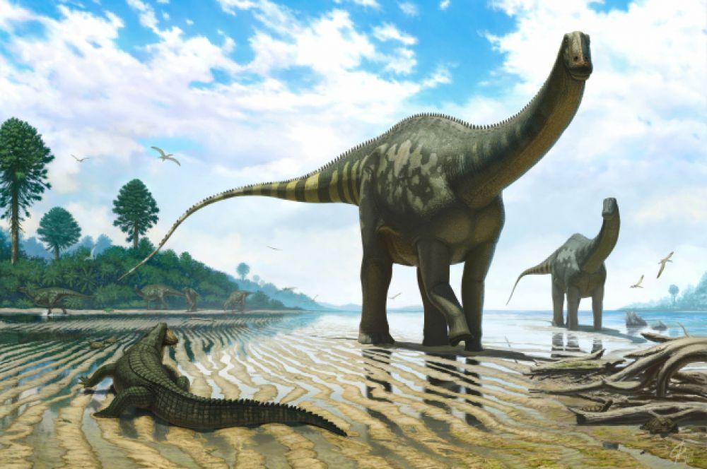 Демандазавры, скорее всего, обитали и у нас. Этим величественным созданиям нужно было много пресной воды, а в древности на территории Кузбасса её было в достатке.