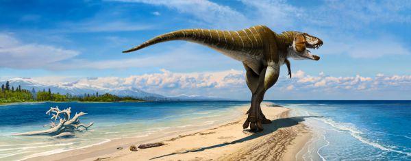 Тираннозавр – всем известный ящер! Он украсил обложку альбома «Картины прошлого Земли».