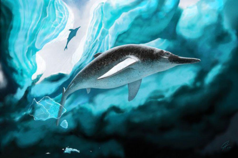 Артроптеригиус – тоже сибиряк. Это один из самых северных ихтиозавров. Останки этого древнего обитателя нашей планеты, например, находили в Коми.