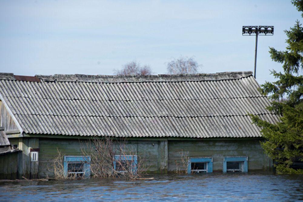 В Омской области, по данным МЧС, в результате таяния снегов и подъема уровня реки Большой Аев было подтоплено 59 домов в трех населенных пунктах - деревне Уки, селе Большие Уки и селе Становка.