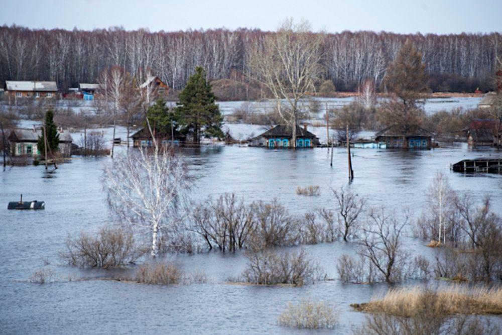 Так, в Большеуковском районе в пяти населенных пунктах - Уки, Большие Уки, Становка, Поспелово, Фирстово - подтоплено 92 дома, в которых проживает 298 человек, в том числе 34 ребенка.