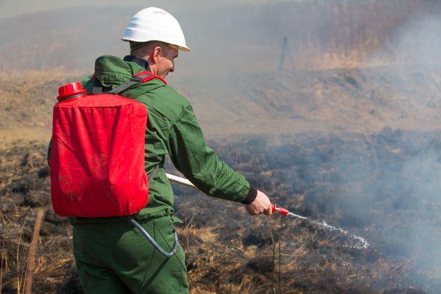 Учения по ликвидации лесных пожаров.