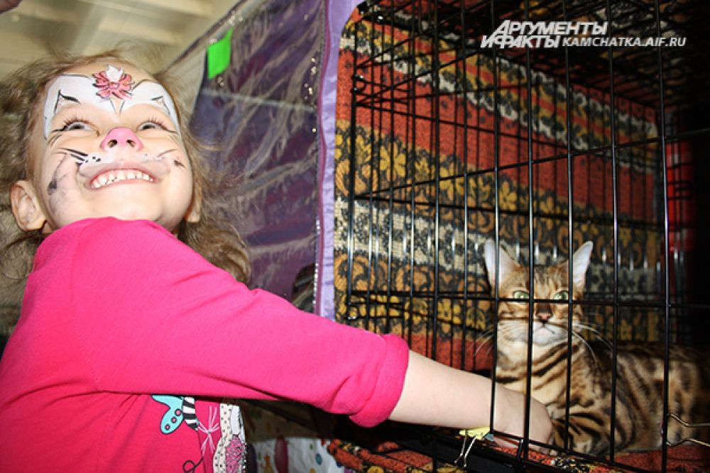 Бенгальская Вася очаровала самых маленьких посетителей выставки.