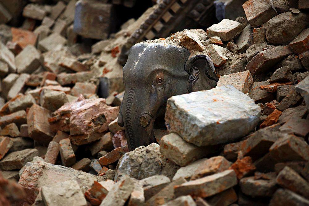Уже известно, что Еврокомиссия выделит властям Непала 3 миллиона евро для ликвидации последствий землетрясения, команда экспертов уже работает в районе бедствия, сообщается в коммюнике ЕК.