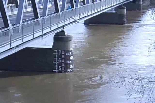 Уровень реки Кондома.