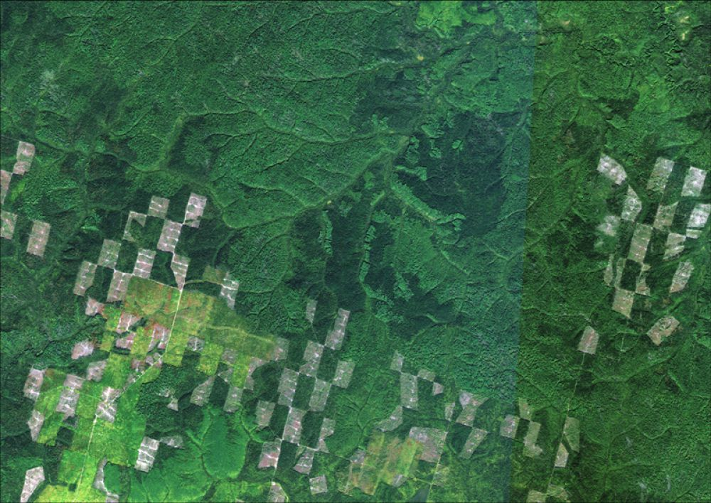 Снимок со спутника SPOT-6, дата 12.09.2013. Пространственное разрешение 1,6 м/пиксел, синтез в натуральных цветах. Разновозрастные рубки на территории Гайнского лесничества.