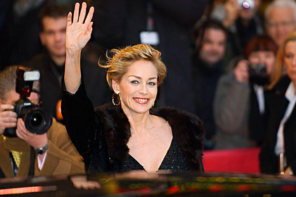 Если бы не Мартин Скорсезе со своим гангстерским «Казино», за который Шерон Стоун получила «Золотой глобус», то она навсегда бы осталась актрисой одной роли. Интересно, что кроме Стоун роль Кэтрин Трэмелл в «Основном инстинкте» предлагали половине Голливуда: Ким Бэйсингер, Джулии Робертс, Мег Райан, Мишель Пфайффер. В любом случае, фильм не получил ничего кроме премии MTV. Можно считать, что они не прогадали, отказавшись. А Шерон Стоун приобрела всемирную славу, правда до сих пор это не принесло ей ни одного «Оскара».