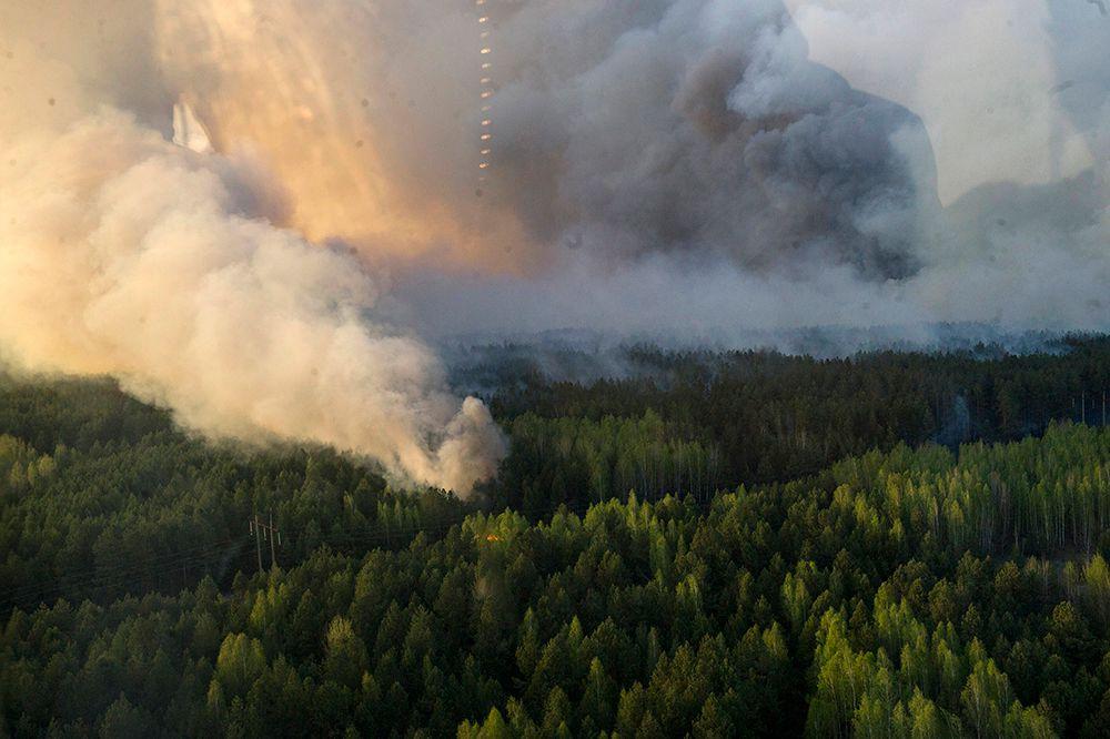 «Ситуация осложняется сильными порывами ветра, горит трава и верхушки леса в 15 точках возгорания, из которых три — очень крупные», — говорит Шкиряк.