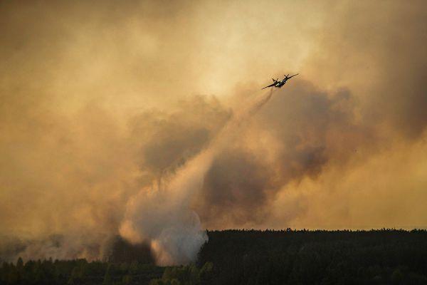 На месте пожара работают более 300 спасателей и 50 единиц техники, сообщили в Госслужбе по чрезвычайным ситуациям Украины.