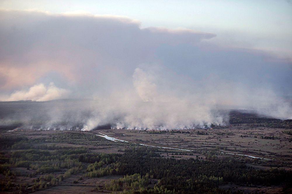 По данным Государственного агентства Украины по управлению зоной отчуждения горело примерно 2 тыс. га.