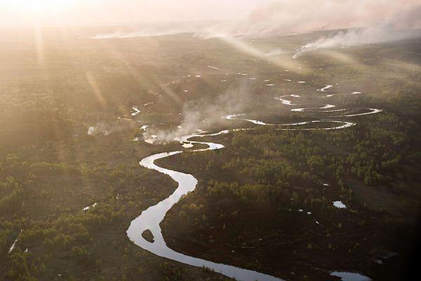 Премьер-министр Арсений Яценюк назвал этот пожар самым большим в зоне Чернобыльской АЭС с 1992 года. «Ситуация под контролем, до самой станции остается около 20 километров», - сообщил украинский премьер.