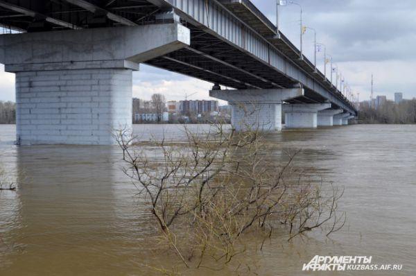 Уровень воды в Томи поднялся на несколько метров за короткое время.