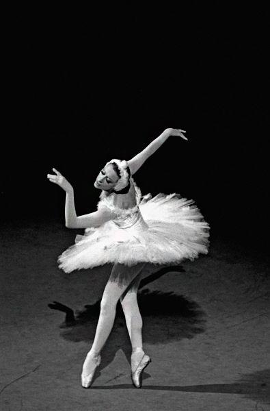 В пластике Майи Плисецкой танцевальное искусство достигает высокой гармонии.