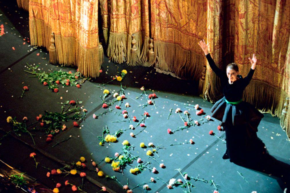 Бразильские граффити-художники Эдуардо Кобра (Eduardo Kobra) и Агналдо Брито (Agnaldo Brito) посвятили одну из своих работ Майе Плисецкой. Портрет (длина — 16 метров, ширина — 18 метров) находится на стене дома по адресу: г. Москва, ул. Большая Дмитровка, 16, корпус 2.