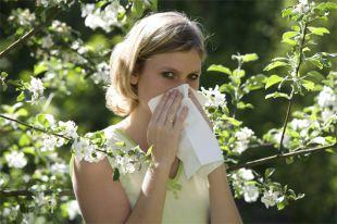 Антигистаминное поколение. Как выбрать средство от аллергии?