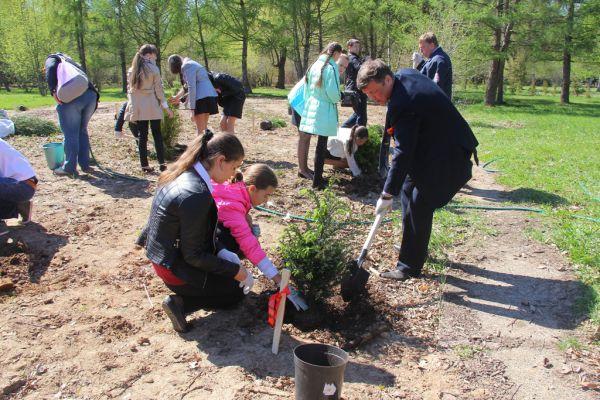 Генеральный директор «АиФ-НН» Александр Вахромеев сажает дерево вместе с ученицами школы №126