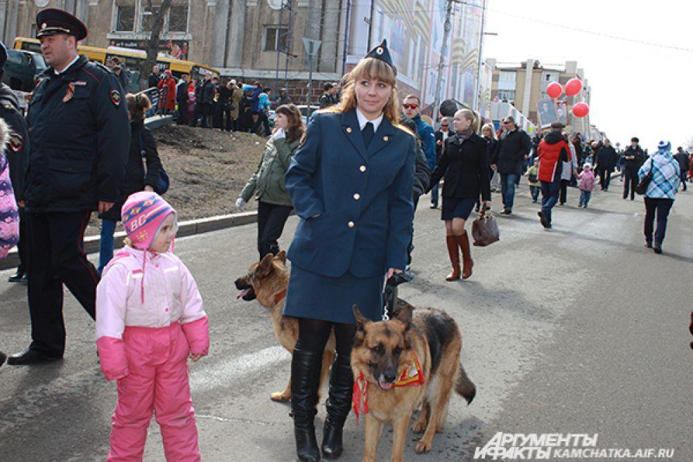 Во время Великой Отечественной войны на фронте «служило» 40 тысяч собак...