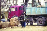 В Омске применяют механизированнный метод высадки деревьев.