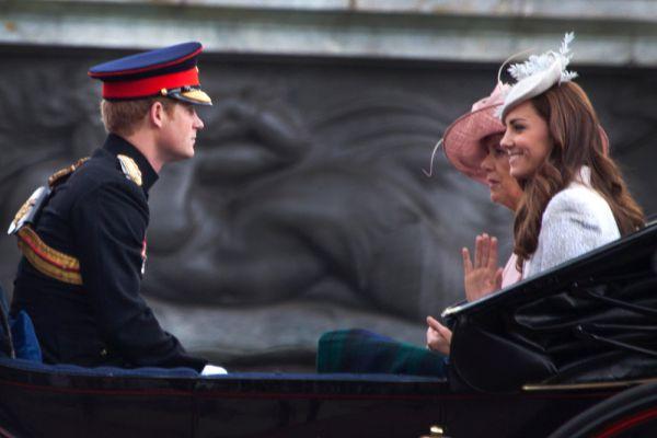 В 2005 году вспыхнул очередной скандал. Причем, наверное, Гарри догадывался, что так будет, но жить тихо и спокойно ведь так скучно… На традиционном январском маскараде он появился в тропической форме нацистского офицера времен Второй мировой войны со свастикой на рукаве. Позже принц, конечно, извинился за свой «необдуманный поступок», вернее это сделал его пресс-служба. Несмотря на этот скандал, его все же приняли в Сэндхерст.