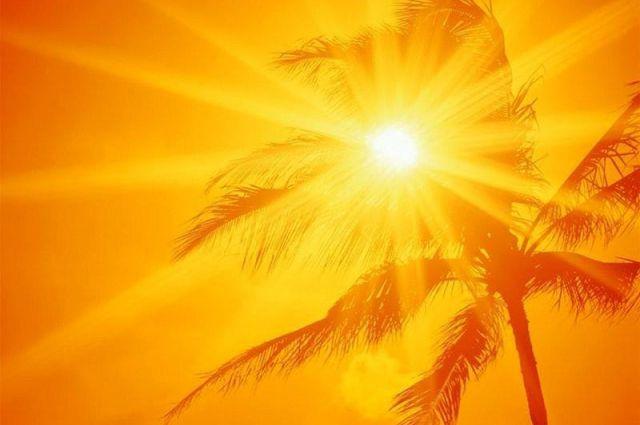 фото жаркое лето