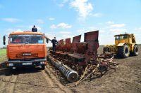 40% площадей уже засеяли зерновыми.