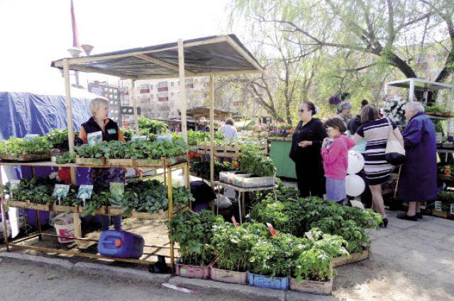 Более 50 фермеров, агропредприятий, учебных заведений и садоводов-любителей участвовали в ярмарке.