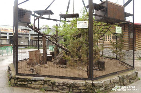 В зоопарке Фрося обрела новый дом и друзей.