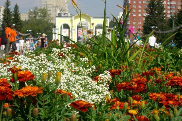 В екатеринбургском парке Маяковского появятся скалодром и тропа здоровья