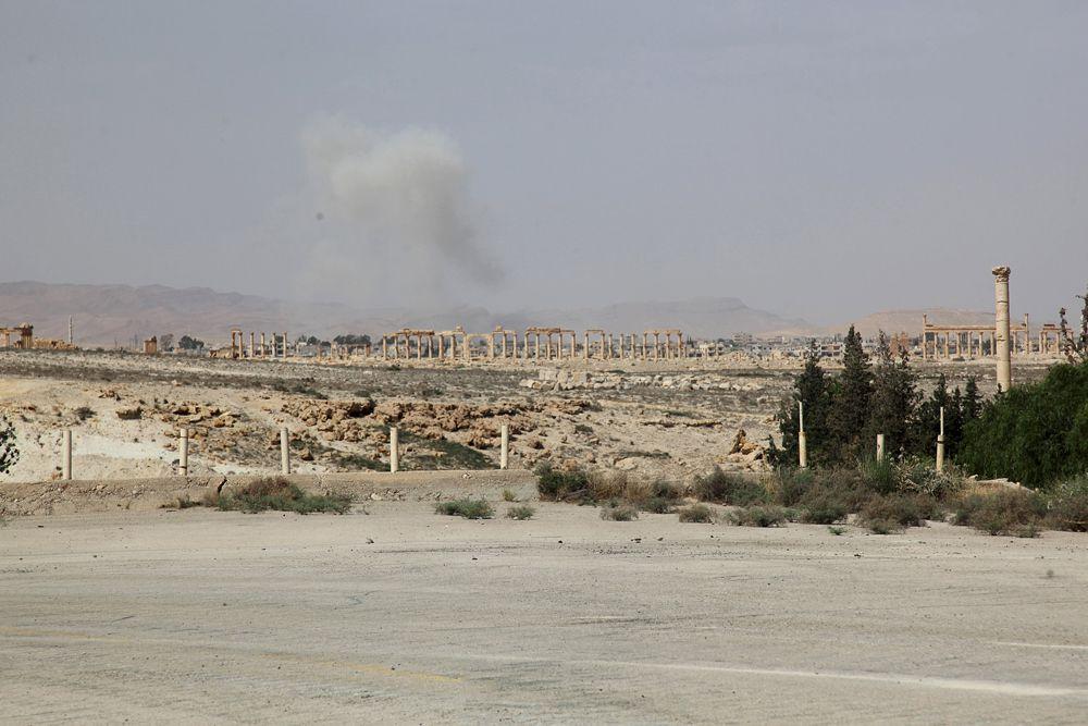 Накануне войска Башара Асада вышли из сирийской Пальмиры, в которой находится крупный храмовый комплекс. Согласно официальному сообщению, это было сделано для того, чтобы сохранить от уничтожения бесценные развалины, возраст которых достигает двух тысяч лет.