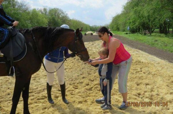 У лошади такие мягкие, ласковые губы и тёплый язык...
