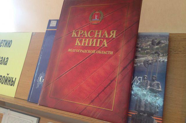 Красная книга волгоградской области животные реферат 8020