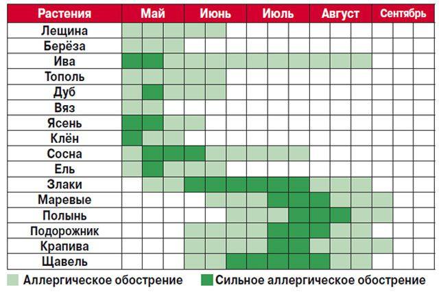 Что сейчас цветет в москве 2018 аллергия