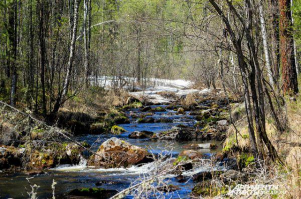Любоваться природой Сибири можно бесконечно долго.