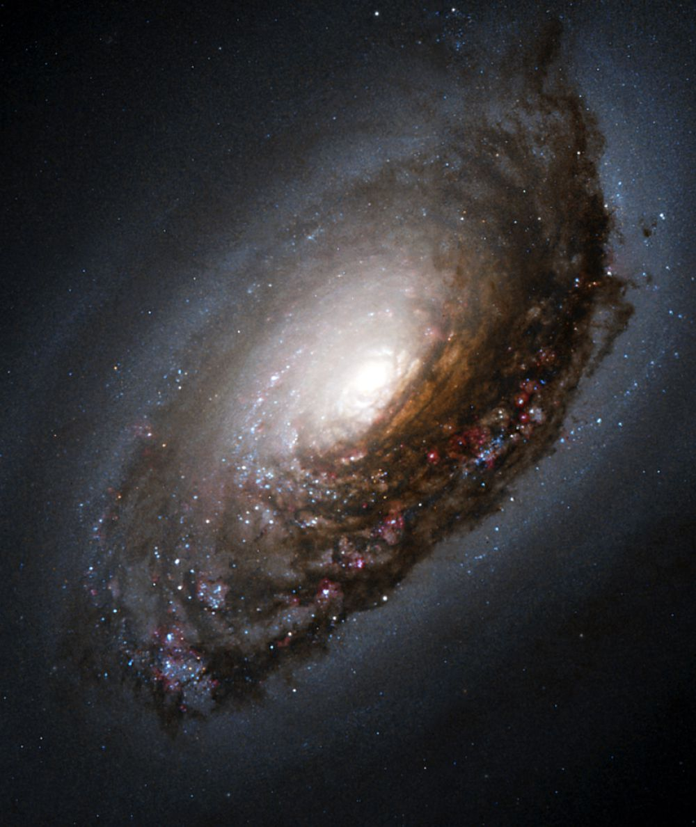 M 64 (галактика Спящая Красавица, галактика Чёрный Глаз) — галактика в созвездии Волосы Вероники. Особенностью этого объекта является его происхождение из двух слипшихся галактик с разным направлением вращения. Вследствие этого газопылевой диск во внутренней части объекта вращается в противоположную сторону относительно вращения звёзд и газа на его периферии.