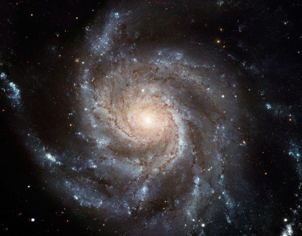 Галактика Вертушка (М101) — спиральная галактика в созвездии Большая Медведица. М101 мы видим плашмя; она очень похожа на наш Млечный Путь, только по размерам несколько крупнее. Галактика обладает ярко выраженными спиральными рукавами и небольшим компактным балджем.