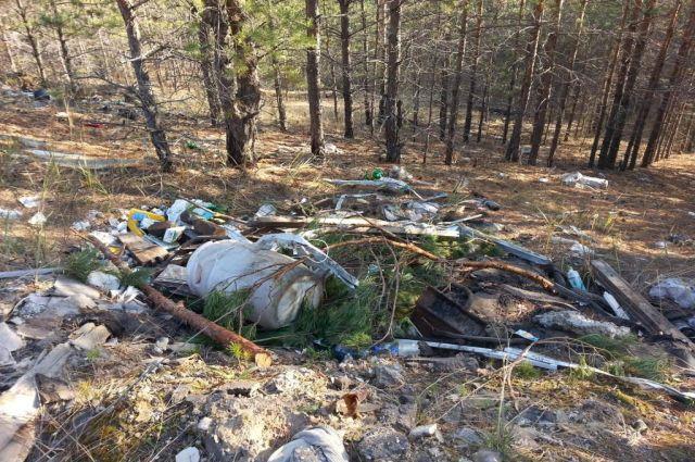 Талицкие чиновники загрязняют лес бытовым и строительным мусором