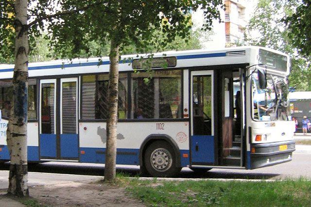 Автобусы будут ходить по специальным маршрутам.