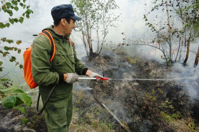 Тушить лесной пожар из распылителя - практически бесполезное дело.