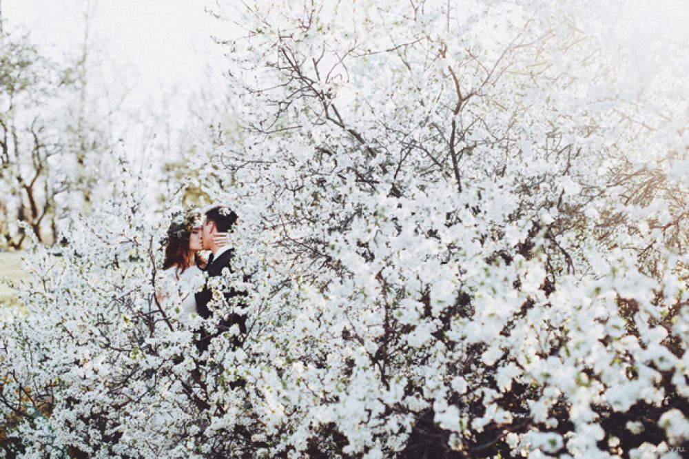 Весенняя свадьба в романтическом стиле.