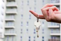 За полгода омская недвижимость дважды проходила всплеск приобретения квартир.