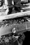 Поселок решено было не восстанавливать, жителей Нефтегорска по их желанию переселили в другие населенные пункты Сахалинской области - города Оха, Ноглики и Южно-Сахалинск.
