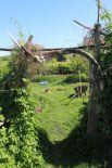 Вид на огород со двора