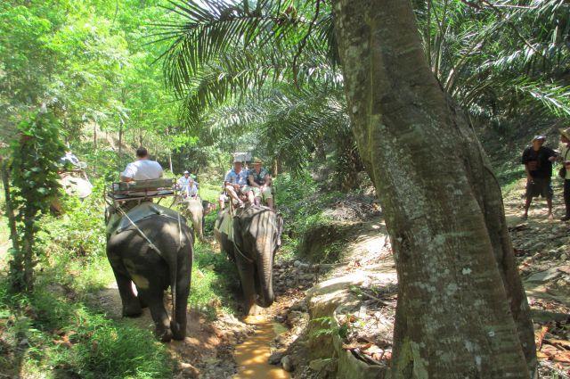 Туристы из Новосибирска теряют интерес к Тайланду.