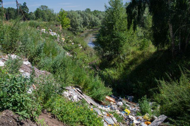 Свалки по берегам реки - нередкое явление.