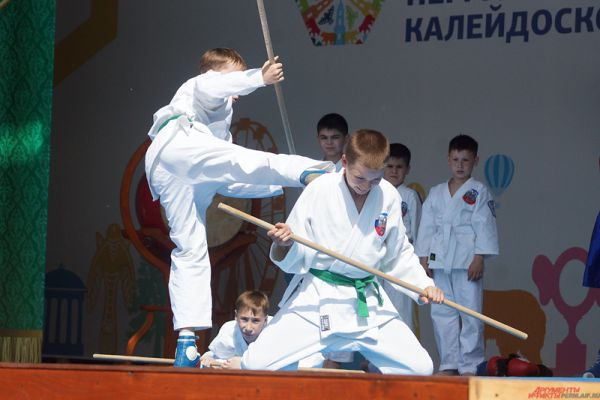 Всего в показательных боях различных видов единоборств участвовали порядка 200 спортсменов.