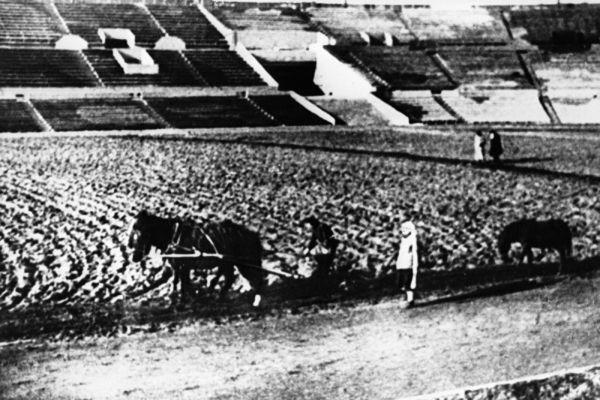 Работники стадиона «Динамо» сеют газон. 1931 год.